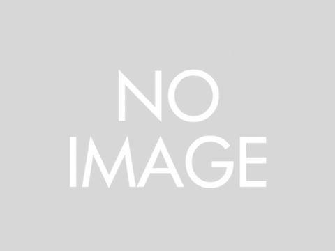 MCペインター 【G01】 マグゴールド